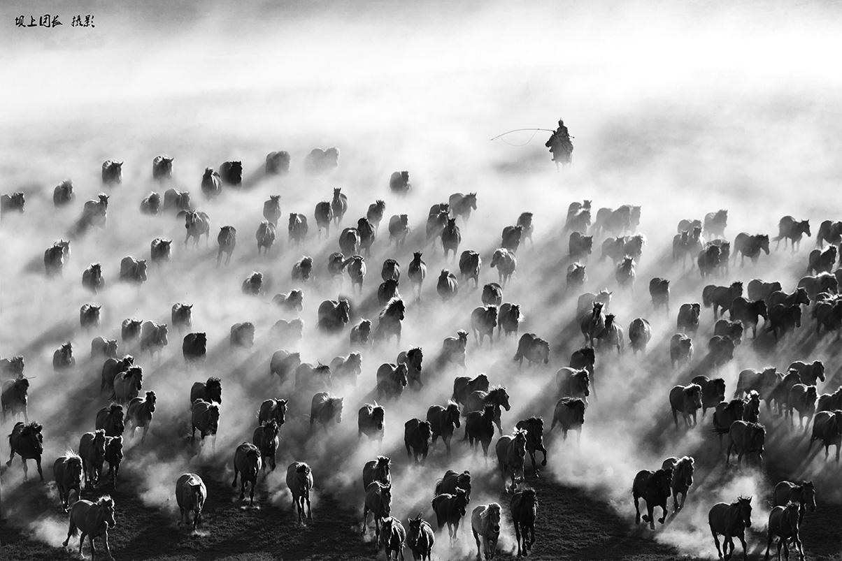 万马奔腾——天下小摄影旅行坝上摄影团