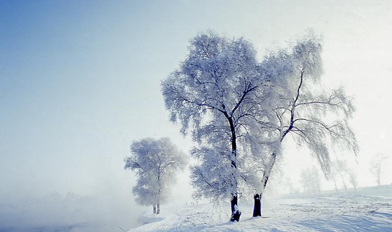 冬季雾凇岛、长白山、三角龙湾高品质摄影团(7天)