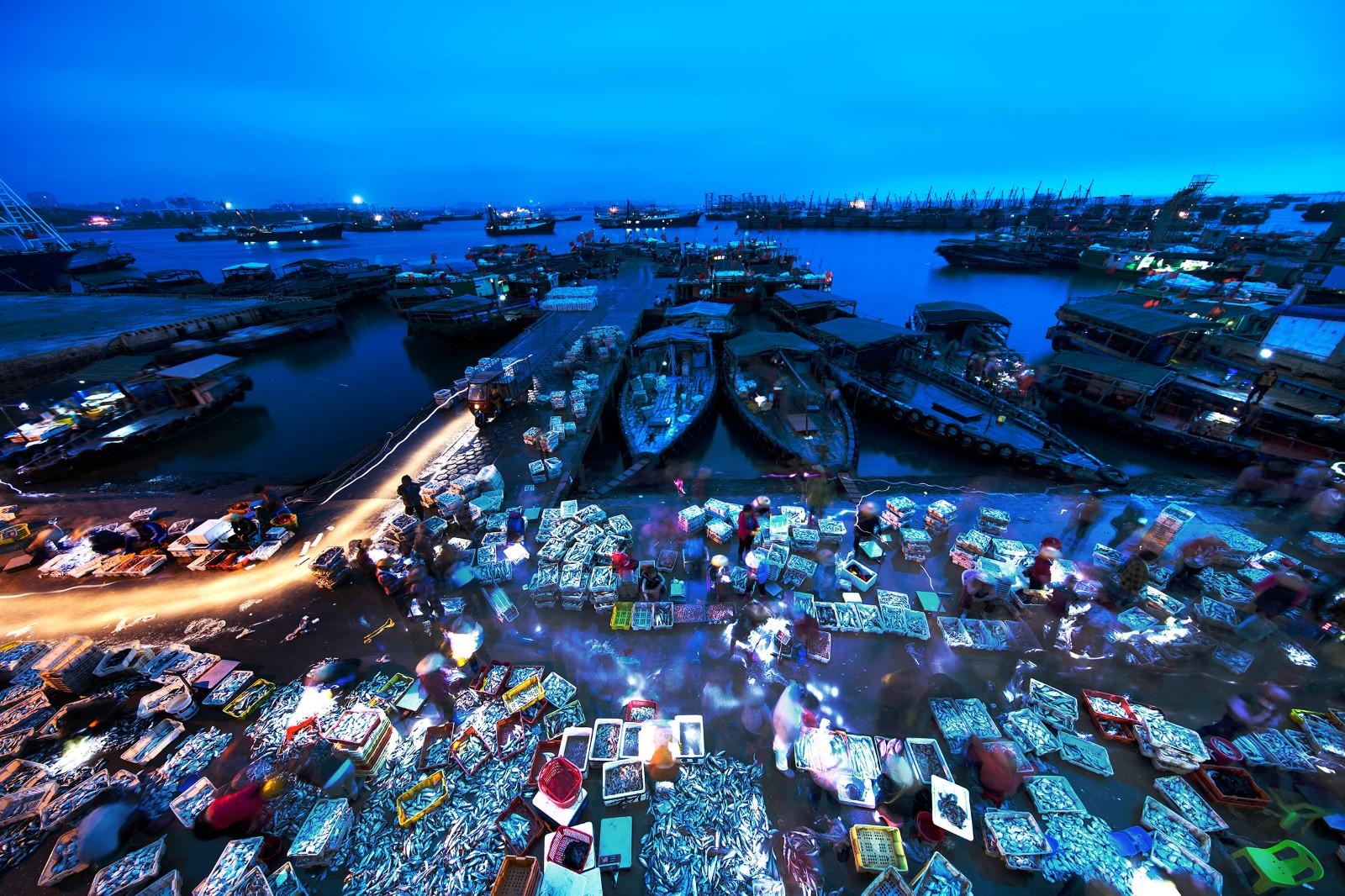 李军《黎明前的渔港》.jpg