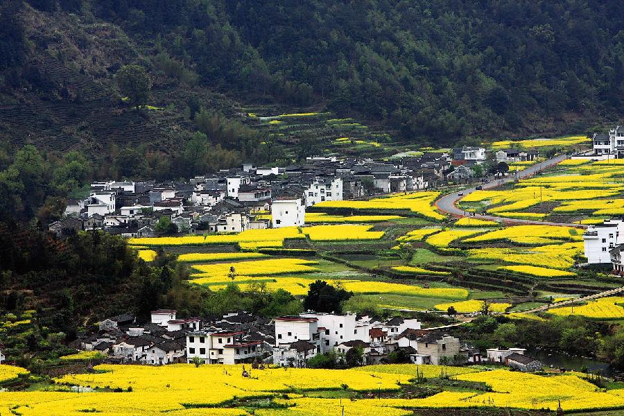 """17.江西婺源 江西婺源时光静止的地方。婺源是位于浙赣皖三省交界处的一个小镇,享有""""中国最美乡村""""美誉。每到春季,这里艳丽的野花,悠闲的静谧以及恬淡的乡村风光总会吸引数以万计的游客。门票:180元5天每人。婺源周边最近的交通枢纽是景德镇。距离景区约98km。北京,上海,深圳等有直达景德镇机场的航班。"""