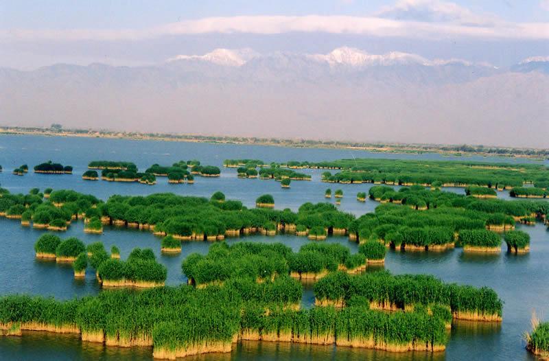 01.宁夏沙湖 宁夏沙湖中国观鸟的首选之地。每年有各种各样的迁徙鸟类在宁夏这片湿地栖息,数量多达100万只。鸟类栖息的时间段分布为4-5月和9-10月。在这片80平方千米的广阔地域上,沙漠,湖水和芦苇荡相互交织,形成了独特的自然景观沙湖。门票:113月60元人,其余时间80元人。沙湖位于银川市北侧56km处。每天有班车往返于沙湖和银川市北门客运站。